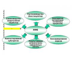 Жидкофазный биопрепарат ЖФБ для растениеводства и земледелия