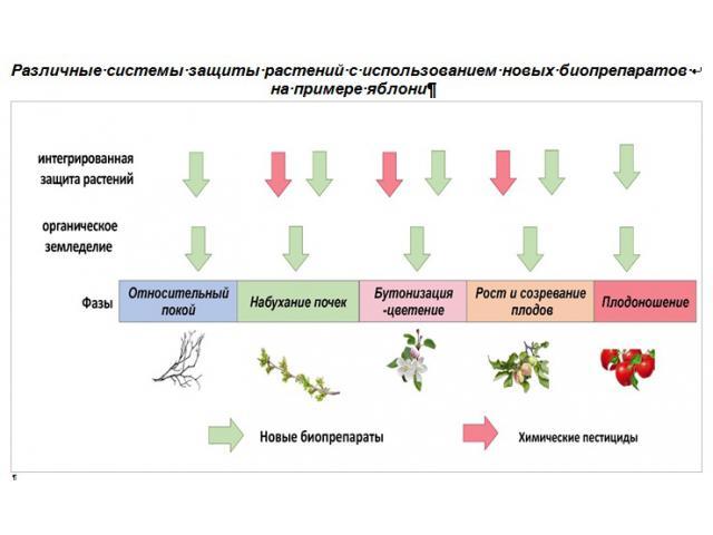Производство и применение новых микробиопрепаратов для  защиты с.-х. культур от вредных организмов
