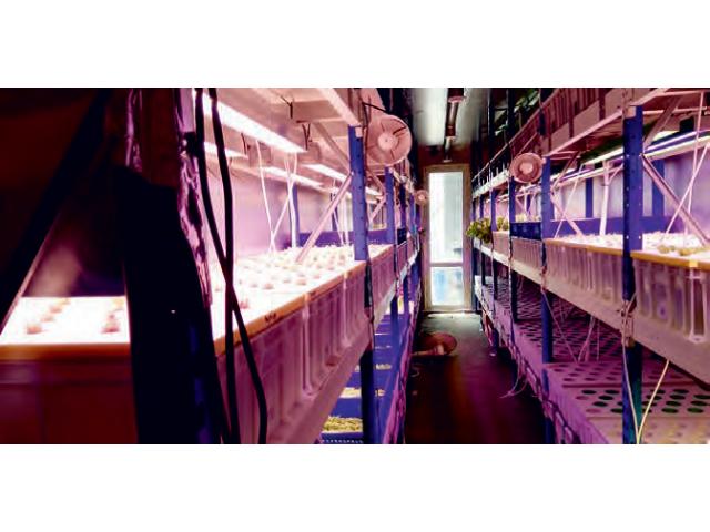 Мобильный комплекс «Фабрика Растений»,