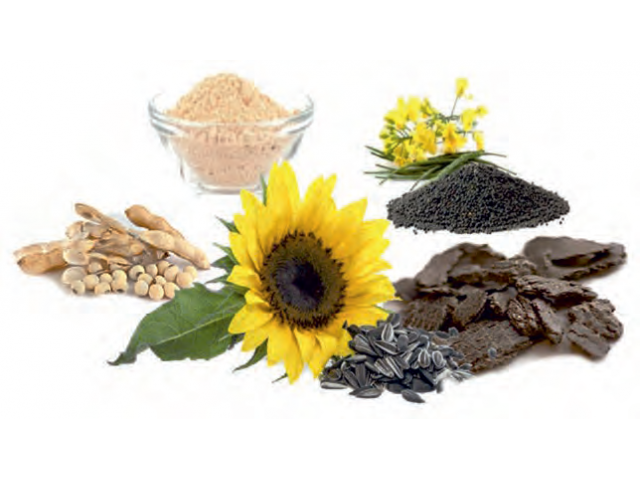 Инновационная ресурсосберегающая технология переработки сырья масличных и белковых,