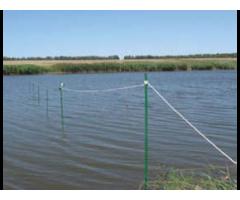 Электротехнология подкормки рыб живыми кормами,