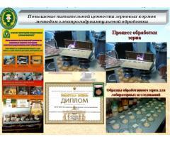 Повышение питательной ценности зерновых кормов методом  электрогидроимпульсной обработки