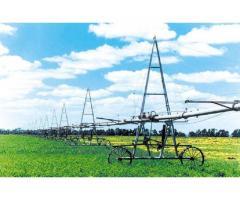 Получение планируемых урожаев овощных культур при поливе дождеванием