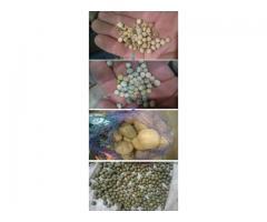 Смеситель-инкрустатор  ECOMIX для предпосевной обработки легко травмируемых семян,