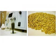 Использование золы биологических отходов  в качестве альтернативного фосфорного удобрения,