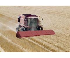 Машина для уборки зерновых колосовых культур очесыванием на корню,