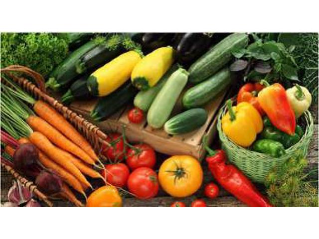 Инновационный способ подготовки почвы для возделывания овощных культур,