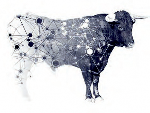 Комплексная оценка ДНК-генотипированных коров,